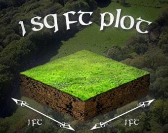 1 sq ft Plot of Irish Land