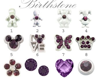 February Birthstone Floating Charms