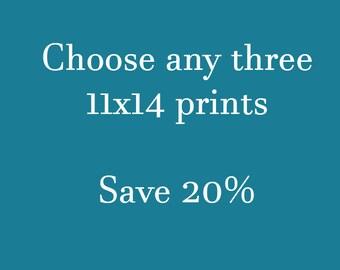 Choose Three 11x14 Prints Save 20%, Photography Print Set, Create Your Own Photo Set, Nature Photography, 11x14, 11x14 Print Set