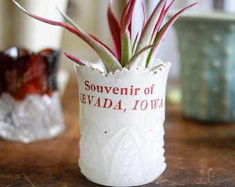 Vintage Victorian Toothpick Holder Souvenir of Nevada Iowa White Milk Glass