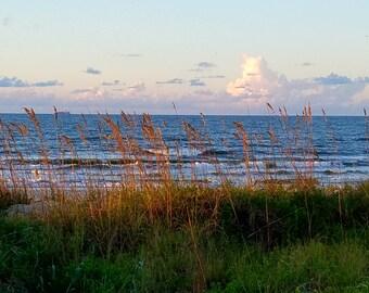 Sea Oats and Sunrise, Isle of Palms, SC