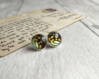 Colourful butterfly post earrings, butterfly stud earrings, insect jewellery, glass jewelry, bug earrings, boho jewelry, mothers day gift