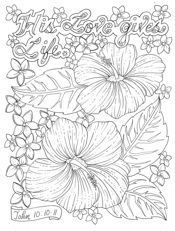 Scripture Garden Coloring Book Christian Coloring for all