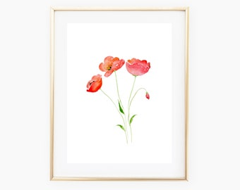Poppies - Watercolor