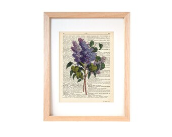 Lilac flower print-Lilacs flowers bouquet dictionary print-Lilac on book page-Garden print-flowers print-rustic print-by NATURA PICTA-DP133