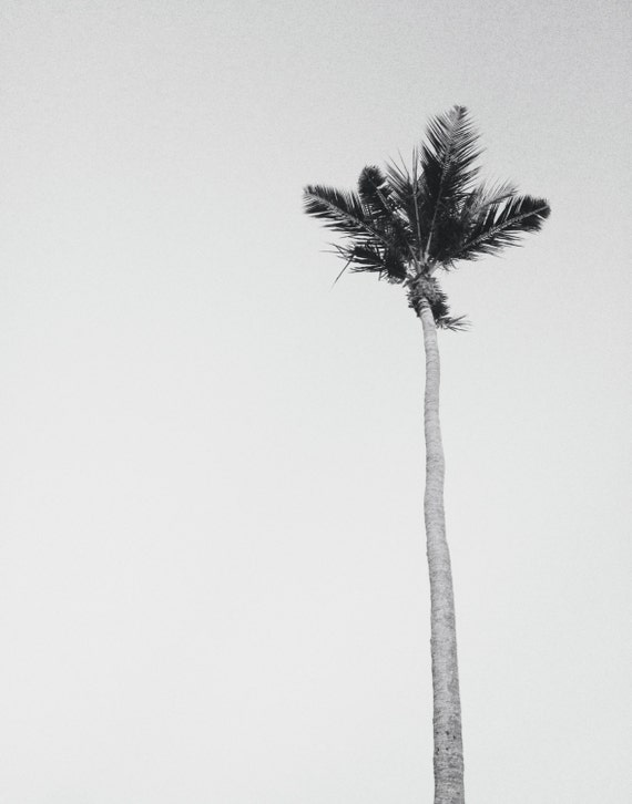 Black white beach photography or color minimalist art