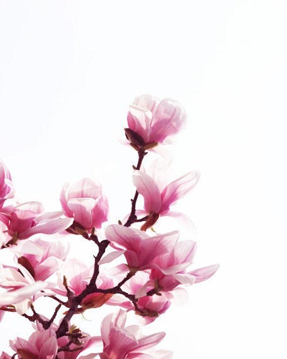 Magnolia Tree Art Print Pink White Magenta Flower Floral