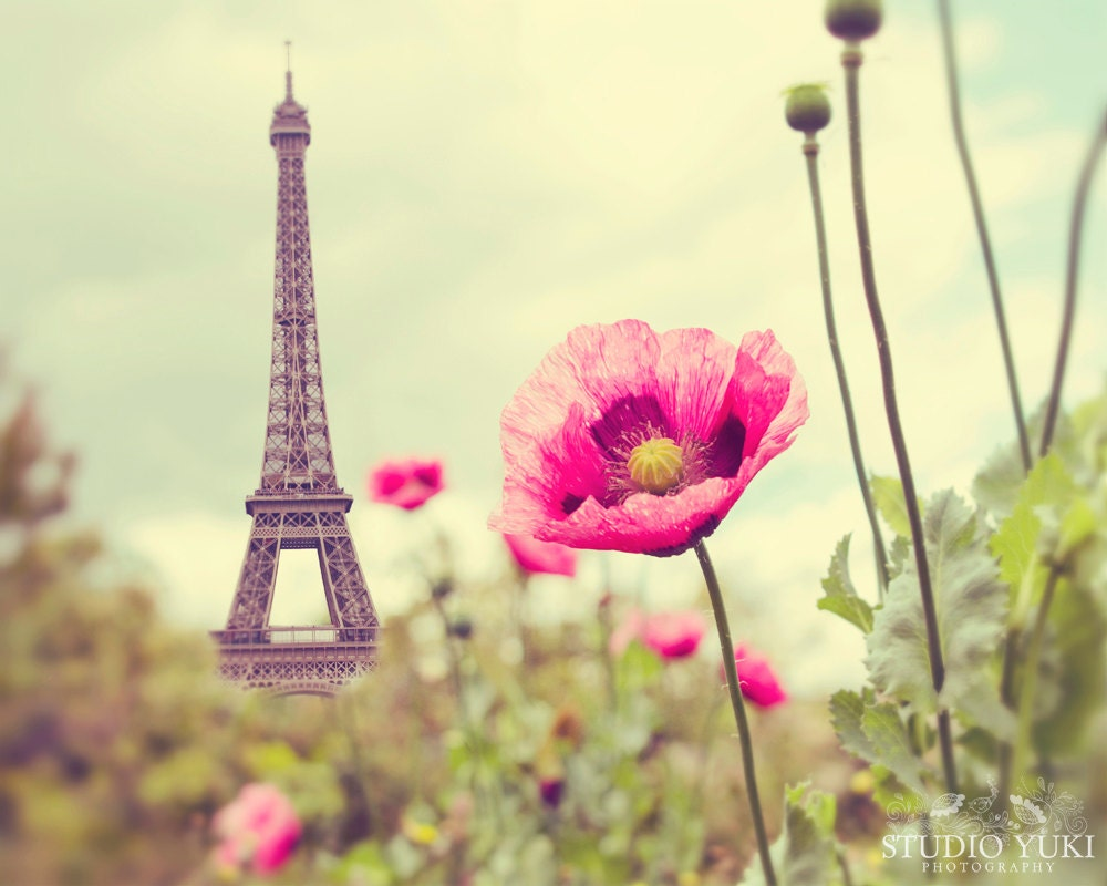 Paris Photography Eiffel Tower Poppies Nature French