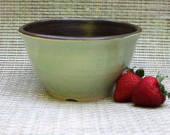 Medium Pistachio Bowl - Wheel Thrown