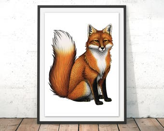 Red Fox Illustration by Lyndsey Green Red Fox Art Print Fox Drawing Fox Wall Art British Wildlife Giclee Art Print Red Fox Poster by Lyndsey