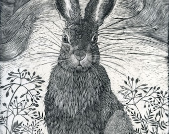 Hare in the Grass Art Greeting Card of Scraperboard original