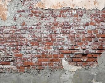 Old Distressed Brick Wall Photo Backdrop, Boys Newborns Photography Background for Photoshoots, Peeling Brick wall photo drop XT-5682