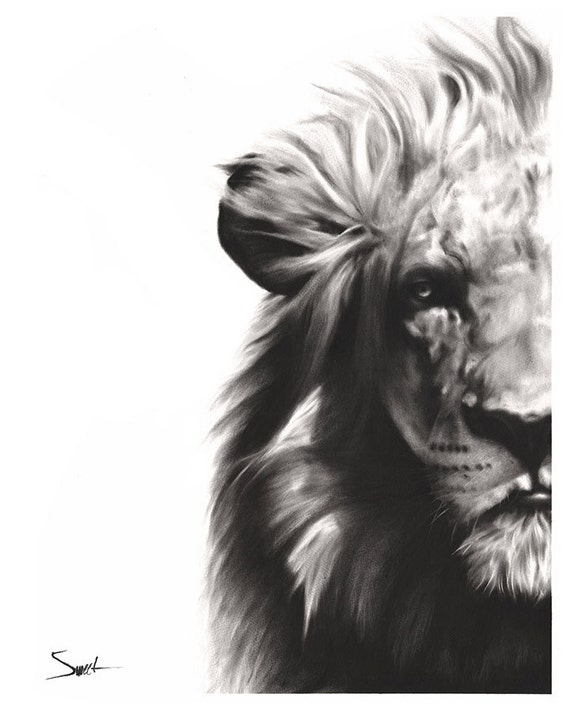 Lion art print lion decor wildlife art print modern animal