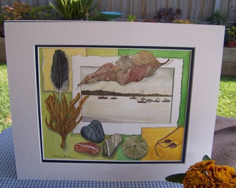 "Watercolour original of things collected at ""Nelson's Bay NSW"""