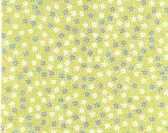 Clothworks Sunwashed Collection floral 30003-2