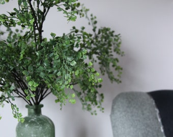 Maidenhair Fern in a Recycled glass Vase