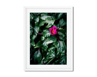 Digital download - photography of Nature and pink flower - spring in Paris - wall decor