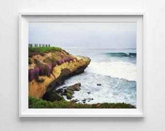 La Jolla Beach Decor - San Diego California Beach Cliffs and Purple Flowers - Pacific Ocean Fine Art Print - Multiple Sizes Available