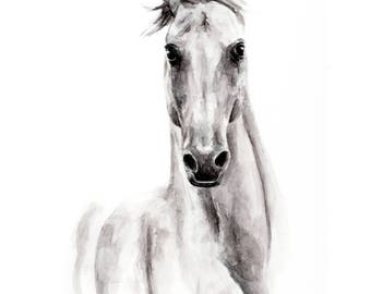 Custom horse painting, 11x15, original watercolor, black white, animal portrait, A3, special gift, elegant animal