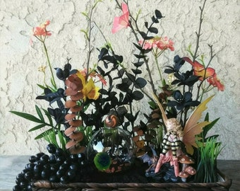 Marimo Moss ball Terrarium Zen Garden - Live Aquatic Plant Terrarium Orb - Dark Fairy