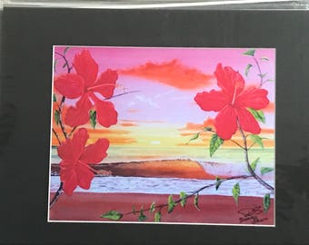 Red Hibiscus Morning