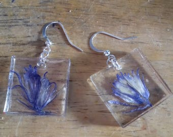Real Natural Purple Bellflower Flower Resin Silver Dangle Earrings Handmade Jewellery Nolaorchid
