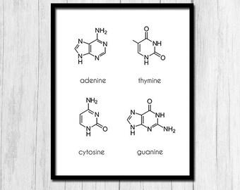 Dna art dna poster nucleotides printable art science art science art print digital download molecule art poster printable art dna art nerdy science gifts dna ccuart Images