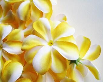 12 Yellow Plumeria Frangipani Heads - Artificial Silk Flower - 3 inches - Wholesale Lot - for Wedding Work, Make Hair clips, headbands, hats