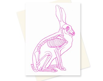 Science Easter Card - Rabbit Skeleton - Bunny Skeleton - Anatomy Card - Anatomy Art - Pink Rabbit - Unique Easter Card - Science Stationary