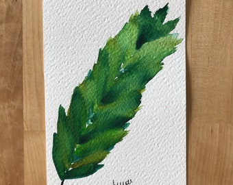 "Watercolor ""Feather leaf"""