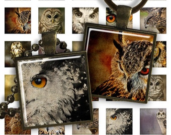 75% OFF SALE Owls - Square Pendant Image PS022 digital printable square 1 inch Bird image pendants glass charms resin magnets wild nature