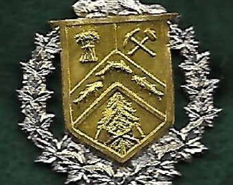 WWII The Three Rivers Regiment /  Royal Canadian Armored Corps TANK- VF on felt and labled