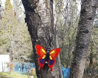 Red, yellow, orange and grape Butterfly