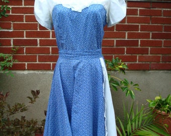 70s Dress Country Dance Calico Dress Kate Schorer 25 Inch Waist