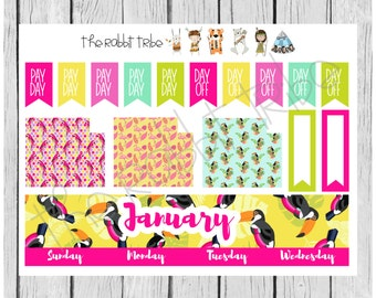 Freestyle Planning - January Monthly Kit - planner stickers