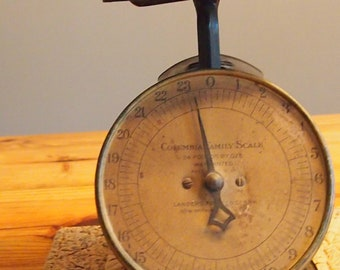 vintage Columbia Family Scale 24 lbs excellent condition