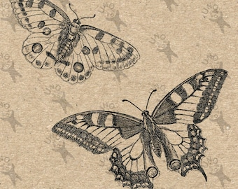 Butterflies Vintage image Instant Download Digital printable clipart graphic - scrapbooking, burlap, kraft, mail art etc HQ 300dpi