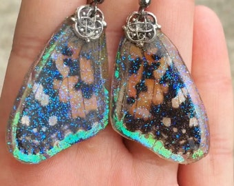 REAL Painted Lady Butterfly Earrings