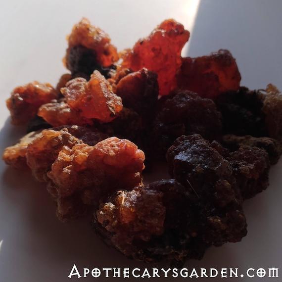 Fresh Somali Myrrh-Commiphora Myrrha