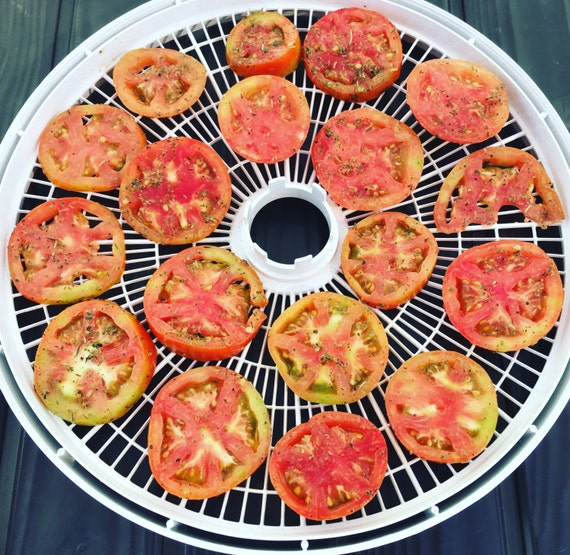 Sundried tomatoes recipe pdf jpg dehydrator recipe homemade this is a digital file forumfinder Images