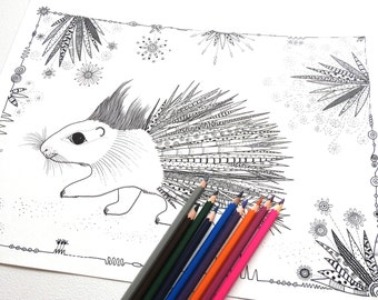 Porcupine - Coloring Page - Colouring Pages -  Adult Colouring - Adult Coloring Page - Colouring Book - Adult Coloring Book - Colouring