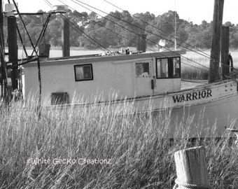 Shrimp Boat, Folly Beach, SC, Creek