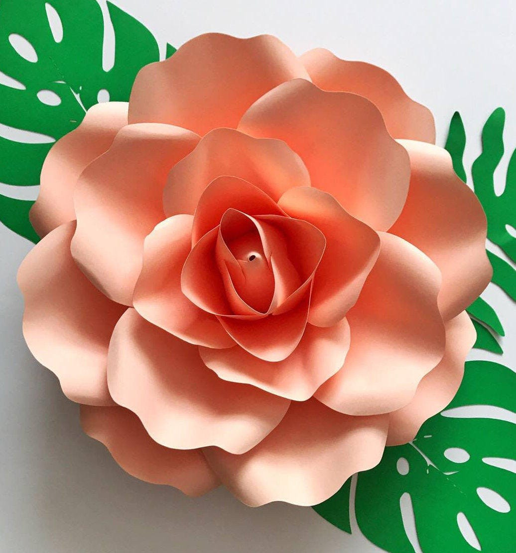 Svg Medium Rose 85x11 Inches Petal Template Digital Version