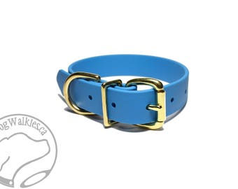 """NEW - Caribbean Blue Biothane Dog Collar / 1"""" (25mm) Wide / Leather Look and Feel / Stainless Steel or Solid Brass Hardware / Custom Collar"""