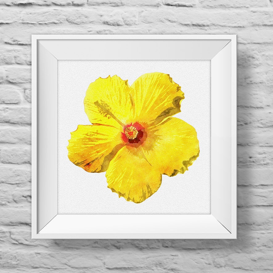 HIBISCUS IN YELLOW - unframed square art print, inspirational ...