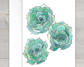 Succulent Watercolor Greeting Cards Box Set Variety Pack