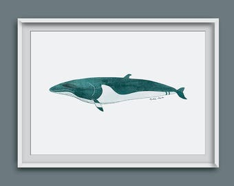 whales, whale print, whale gift, wall art, picture of whales, whale, whale illustration, whale screen print, marine art, ocean art, giclee