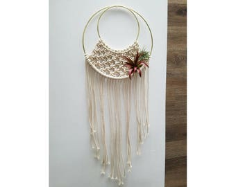 Macrame Wall Hanging with Air Plants / Boho Decor, Gift, Indoor Plant, Bohemian, Air Plant