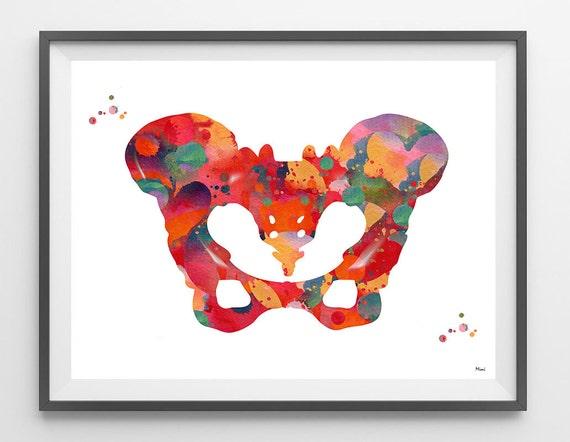 Human Pelvis Watercolor Print Pelvis Bone Poster Orthopedic