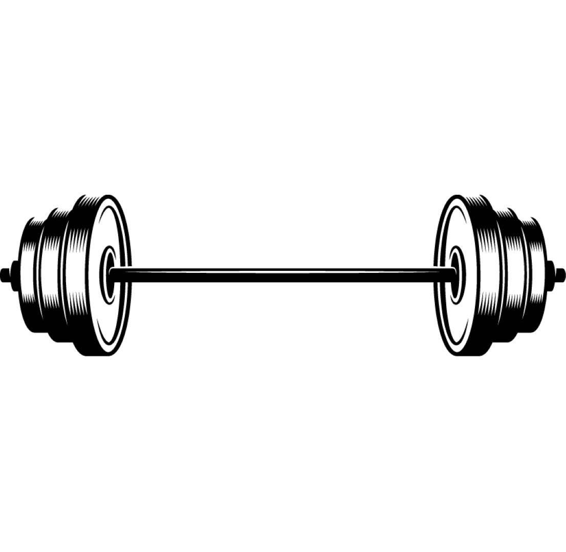 Gym Muscle Bodybuilding Black Mesh Fitness Power Lifting: Barbell 1 Weightlifting Bodybuilding Fitness Workout Gym